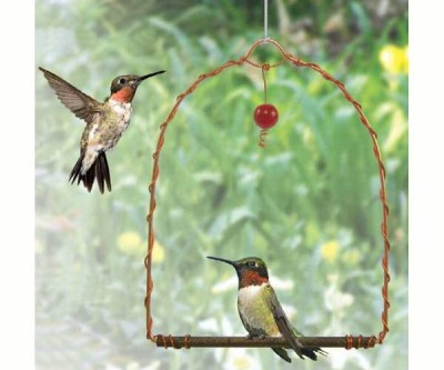 COPPER HUMMINGBIRD SWING - $12.95