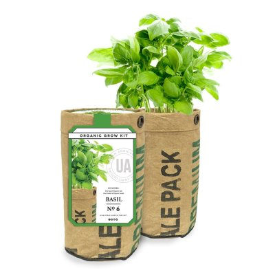 BASIL GROW KIT - $9.95