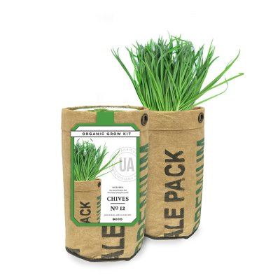 CHIVES GROW KIT - $9.95