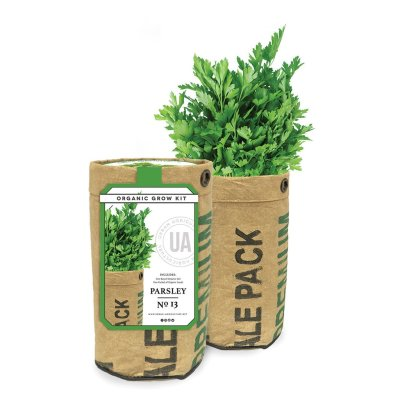 PARSLEY GROW KIT - $9.95